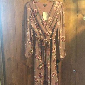 NWT Blush Rose High-Low Dress